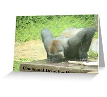 Communal Drinking Water Greeting Card