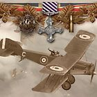 Distinguished Flying Cross (DFC) by AH-Aviation-Art