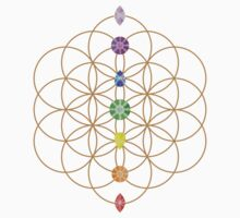 Flower Of Life - Metaphysical by gyenayme