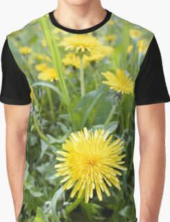 Yellow Dandelion Flowers Graphic T-Shirt