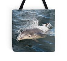Bottlenose dolphin bow riding Tote Bag