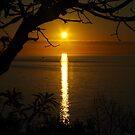 Sunset over Port Phillip Bay by Kerry  Hill