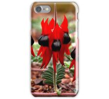 Spring in the Outback: Sturt's Desert Pea  iPhone Case/Skin