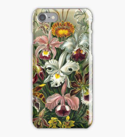 Haeckel Orchids iPhone Case/Skin