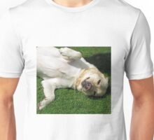 Meet Harvey - Cute K9 Unisex T-Shirt