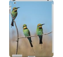 On the Lookout iPad Case/Skin