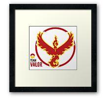 Team Valor Framed Print