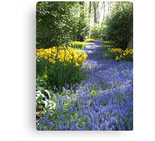 The Flower Lane, Keukenhof Gardens, 2007 Canvas Print