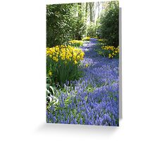 The Flower Lane, Keukenhof Gardens, 2007 Greeting Card
