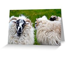 Ram Chat Greeting Card