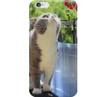 Cat and Smell the Flowers iPhone Case/Skin