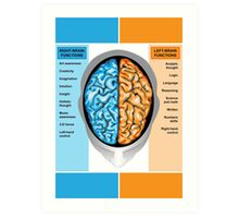 Human brain left and right functions Art Print
