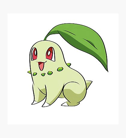 Chikorita Pokemon Photographic Print