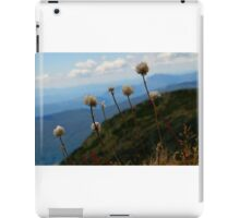 Mt Buller Buds iPad Case/Skin