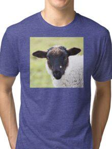 A cute little sheep Tri-blend T-Shirt