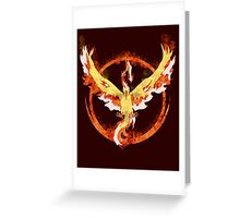team valor unlearned Greeting Card