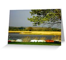 Topsham Dinghies Greeting Card
