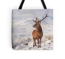 Deer Stag in the snow Tote Bag