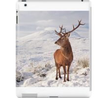 Deer Stag in the snow iPad Case/Skin