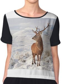 Deer Stag in the snow Chiffon Top