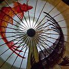 Koi Umbrella by phil decocco