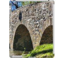 Historic Meadows Road Bridge iPad Case/Skin