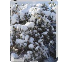 Shining Snow iPad Case/Skin