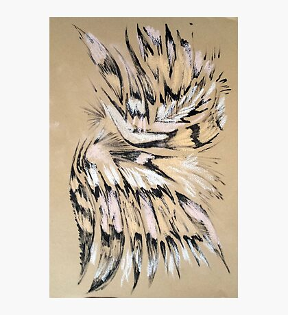 Feather pattern 3 Photographic Print