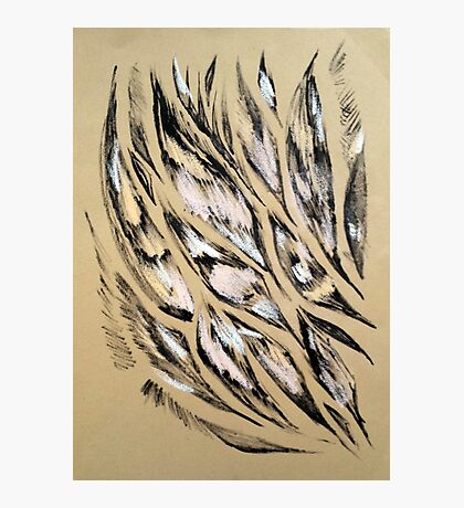 Feather pattern 5 Photographic Print