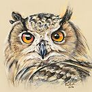 Owl Be Watching You by Paul-M-W