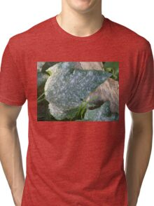 MOTTLED LEAF ON STONE Tri-blend T-Shirt