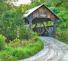 Coburn Covered Bridge by Mary Carol Story