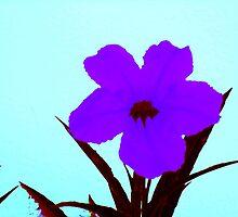 pop flower sapphire blue on turquoise  by davidius