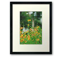 Tangled Beauty Framed Print