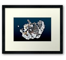 Shimmy Shoom Chrome Fractal Framed Print