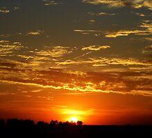 Sunset by WildestArt