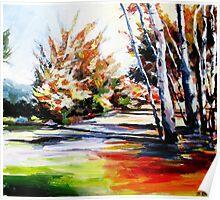 Autumn nature landscape  Poster