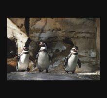 Humboldt Penguin Baby Tee