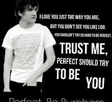 Perfect- Bo Burnham by zachbrain