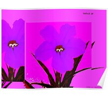 flower dark orchid on magenta Poster