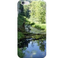 Raging river, still waters iPhone Case/Skin