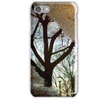 November Arboretum iPhone Case/Skin