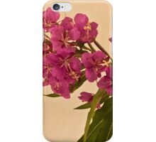 Fire Weed iPhone Case/Skin