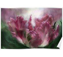 Parrot Tulip - Mauve Poster