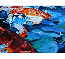 Semi Abstract Koi Fish Photographic Print