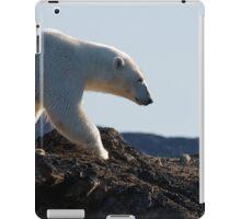 Ours polaire - Polar Bear iPad Case/Skin