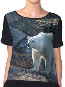 Ours polaire - Polar Bear Chiffon Top