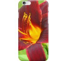 En fire iPhone Case/Skin