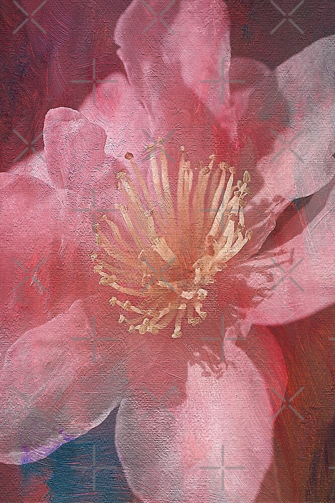 Textured Beauty by Joy Watson