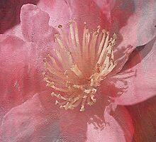 Textured Beauty by Joy Watson